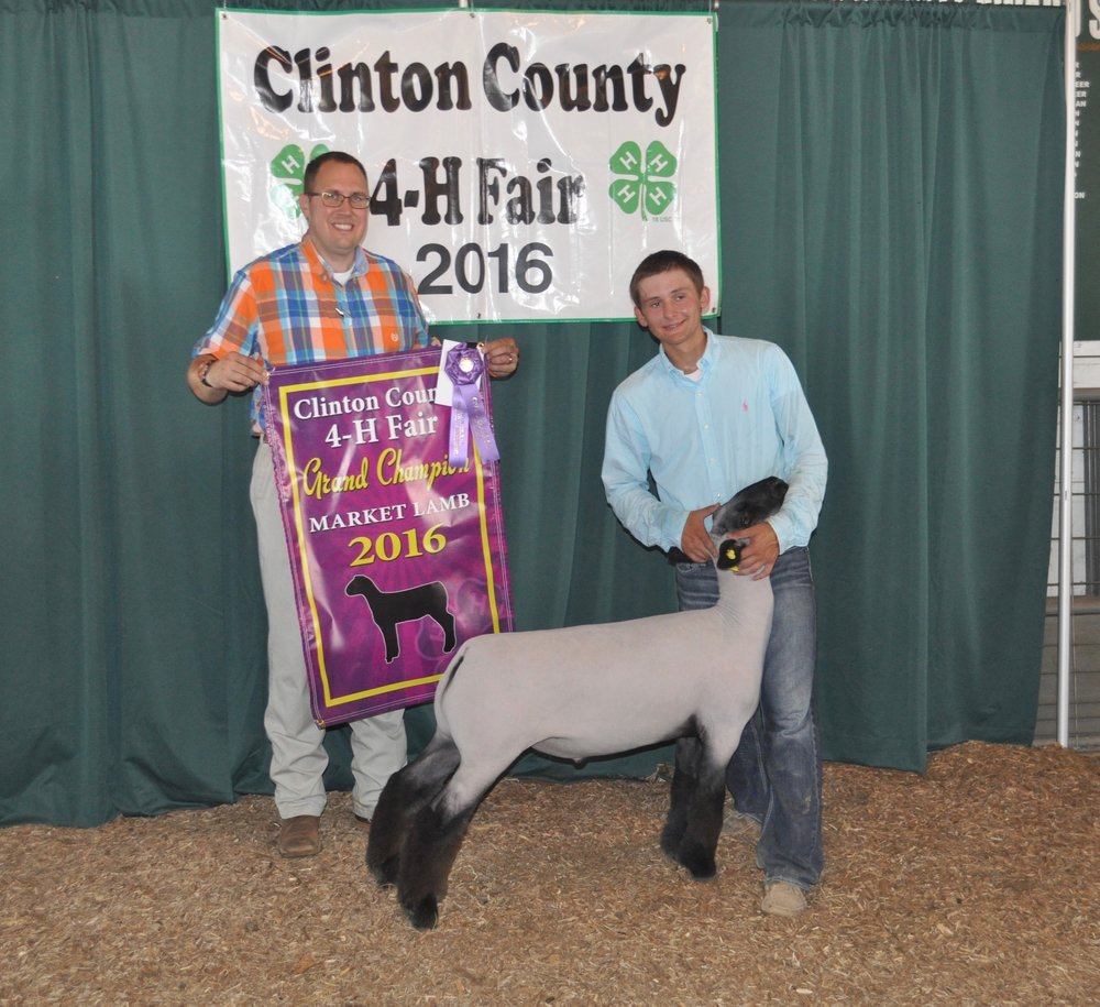 Grand champion - 2016 Clinton County fair (indiana) Sired by:  Barely Legal   Dam:  Wheaton 4-042    Shown by:  Jared Stillwell
