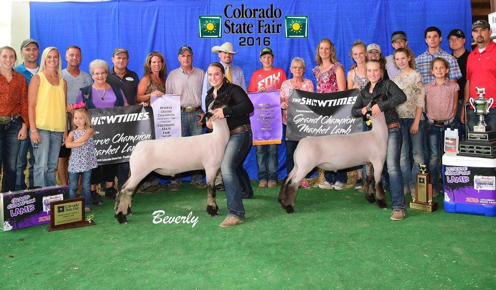 Grand & Reserve Grand Overall - 2016 Colorado State FairSire: CenterfoldBreeder: Maclennan Club Lambs