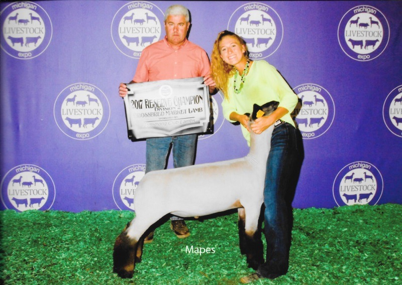 Reserve Division - 2017 Michigan Livestock Expo Sire:  Ali (Barely Legal son)Dam:  Public Enemy daughterShowman:  Maddy StewartBreeder:  Gordeneer Club Lambs