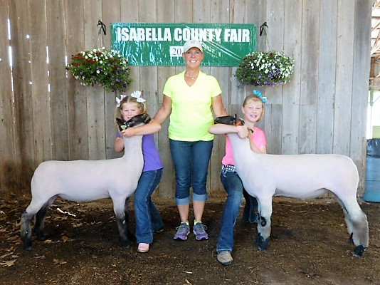 Grand Champion Lamb & Pen - 2017 Isabella County Fair Sire:  Ali (Barely Legal son)Showman:  Kallie and Karli Smith