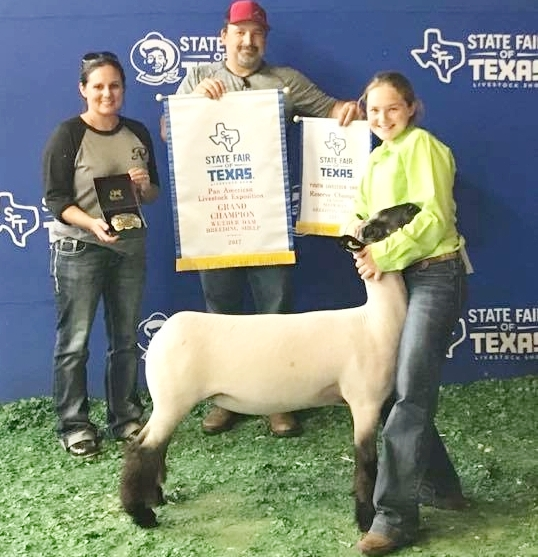 grand champion wether dam - 2017 state fair of texas Sired by:  Ali (Barely Legal son)        Dam:  Wheaton 4-042