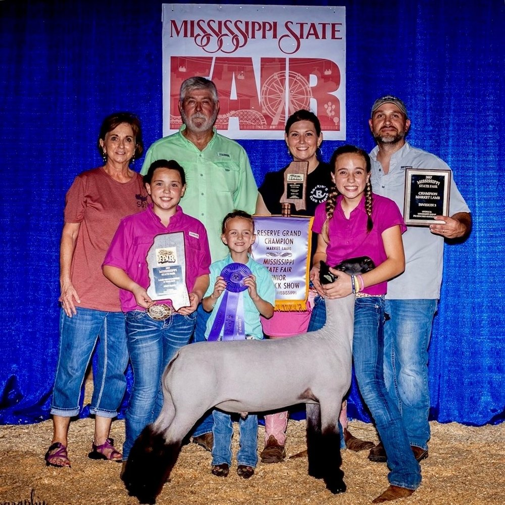Reserve Grand - 2017 Mississippi State Fair Sire:  Ali (Barely Legal son)Dam:  WH 2-060Showman:  Roberson Family