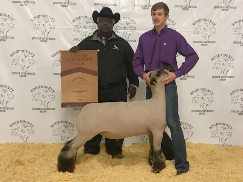 Grand Champion - 2018 Hood County Livestock Show (TX) Sire:  Ali (Barely Legal son)Placed by:  Chad Walker