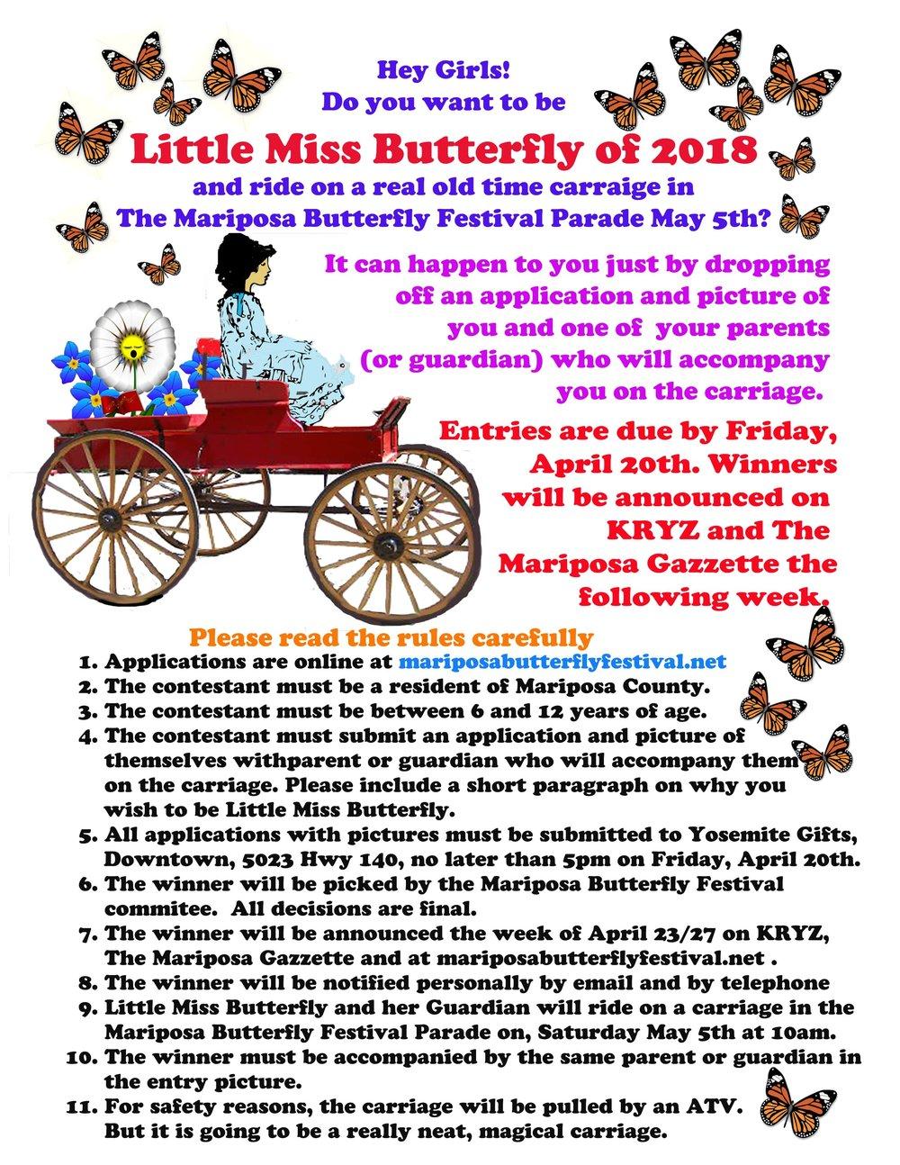 Little miss butterfly 2018-min.jpg