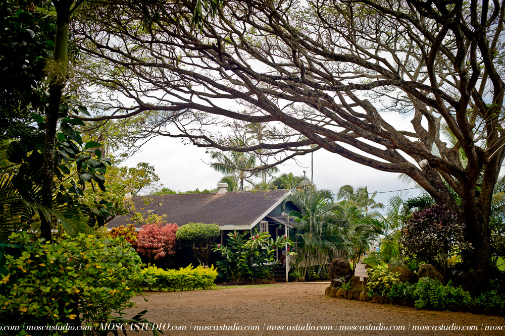 000785-6880-moscastudio-loulu-palms-estate-oahu-hawaii-wedding-photography-20150328-WEB.jpg