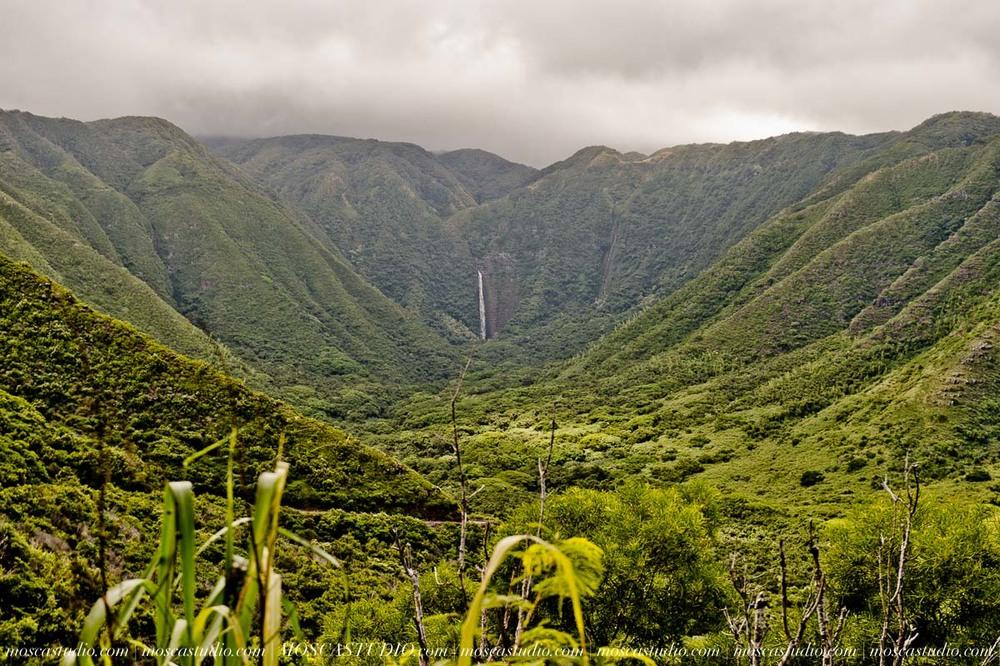 2662-MoscaStudio-travel-photography-Maui-hawaii-travel-molokai-travel-20151014-SOCIALMEDIA.jpg