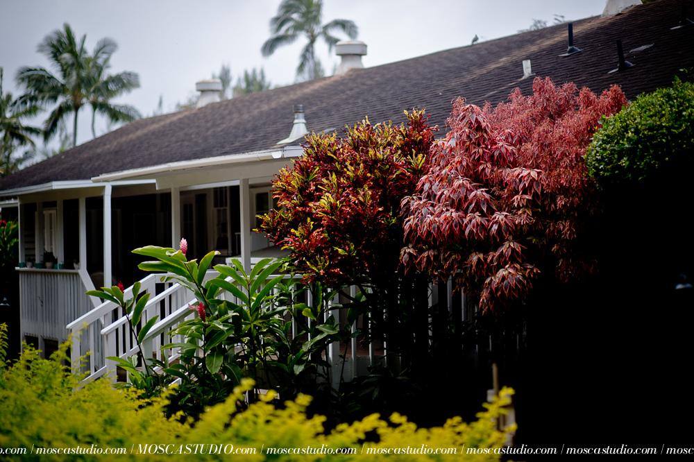 000793-6880-moscastudio-loulu-palms-estate-oahu-hawaii-wedding-photography-20150328-WEB.jpg