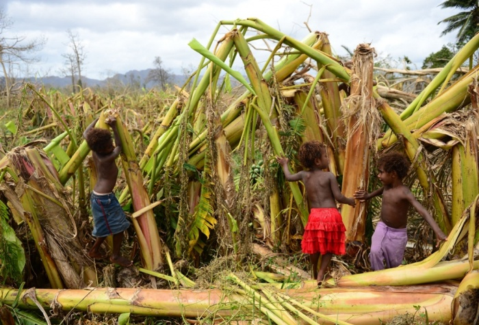 Children play in a destroyed banana plantation. Mele, outside Port Villa.