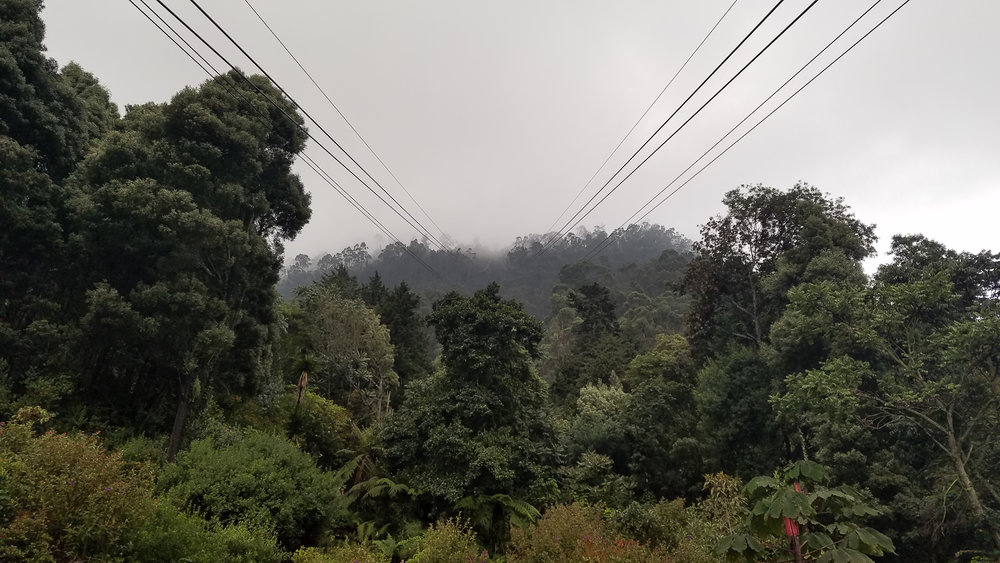 Colombia (s7) (33 of 68).jpg