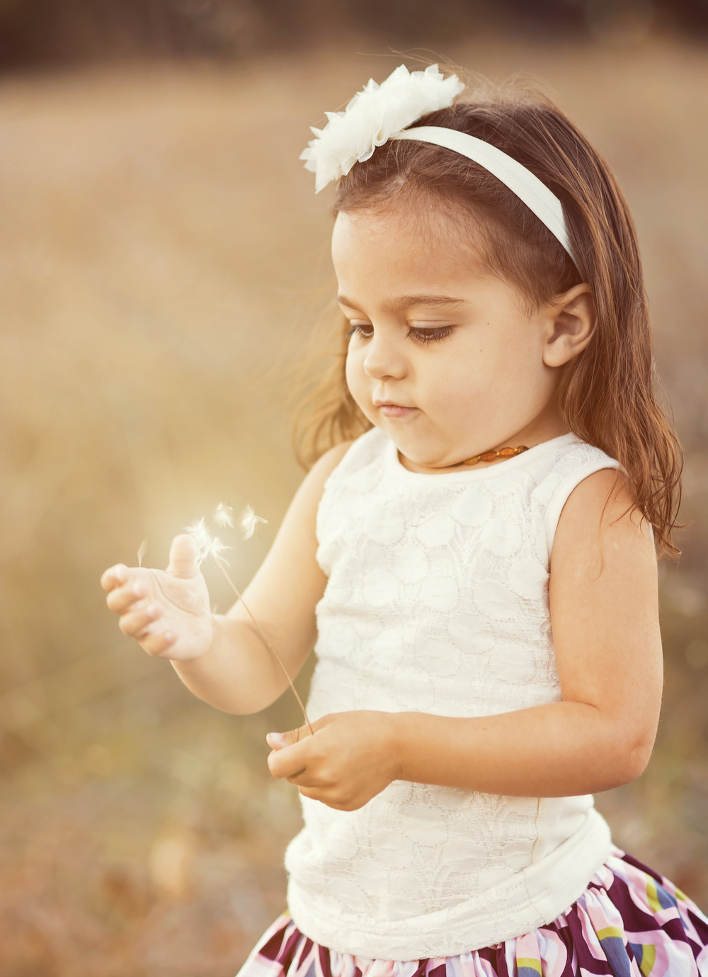 Magic-Wishes-Girl-Dandelion-Thistle-Golden-Grass-Field-Beauty-Nature-Bokeh-Innocence-Light-Love-Exploring-Learning-Mesmerized-Awe-Inspiring