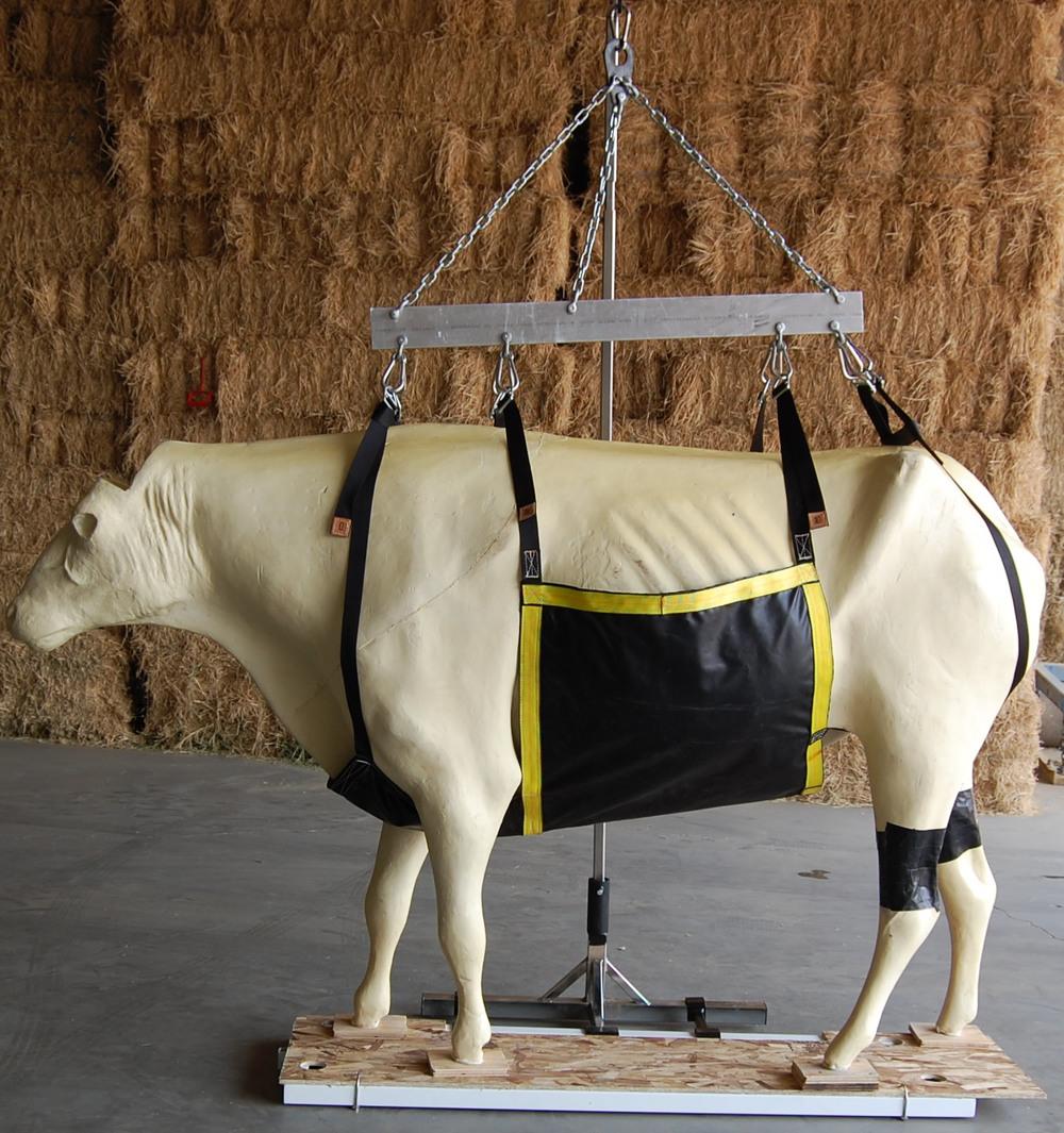 Cow — Large Animal Lift