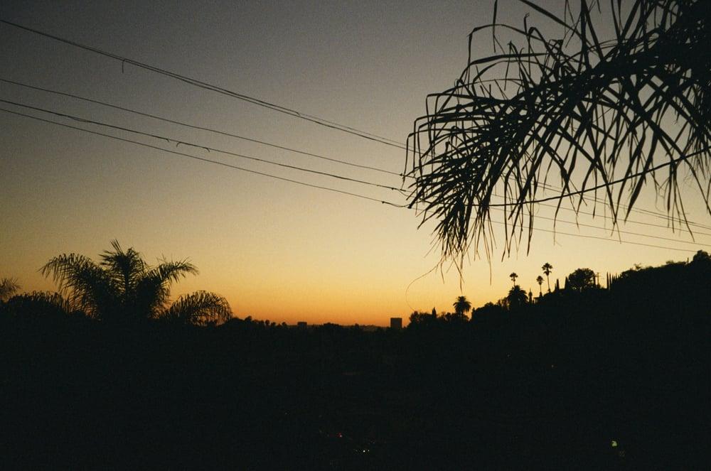 NI_45_LA_AFI_2015.jpg