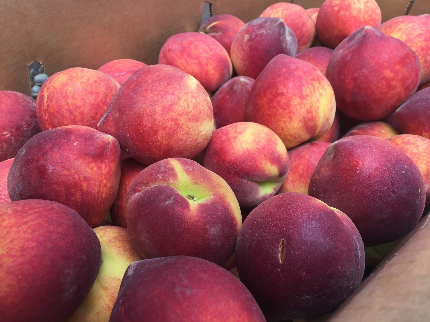 The Peach Truck Comes to Town — domestic goddess