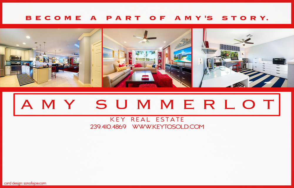 CLIENT: AMY SUMMERLOT, 2015 campaign