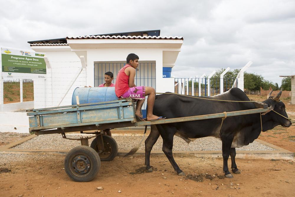 Assentamento Maria da Paz, RN, 15 de outubro de 2015 - Antonio e Vinicius coletam água no sistema que realiza dessalinização da água a partir da energia gerada por sistema PV (Programa Água Doce). (©Greenpeace/Otávio Almeida)