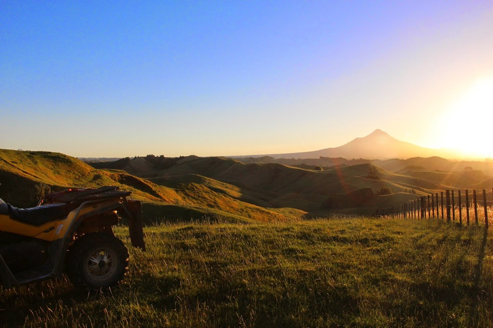 Eastern Taranaki hill country -sheep and beef land