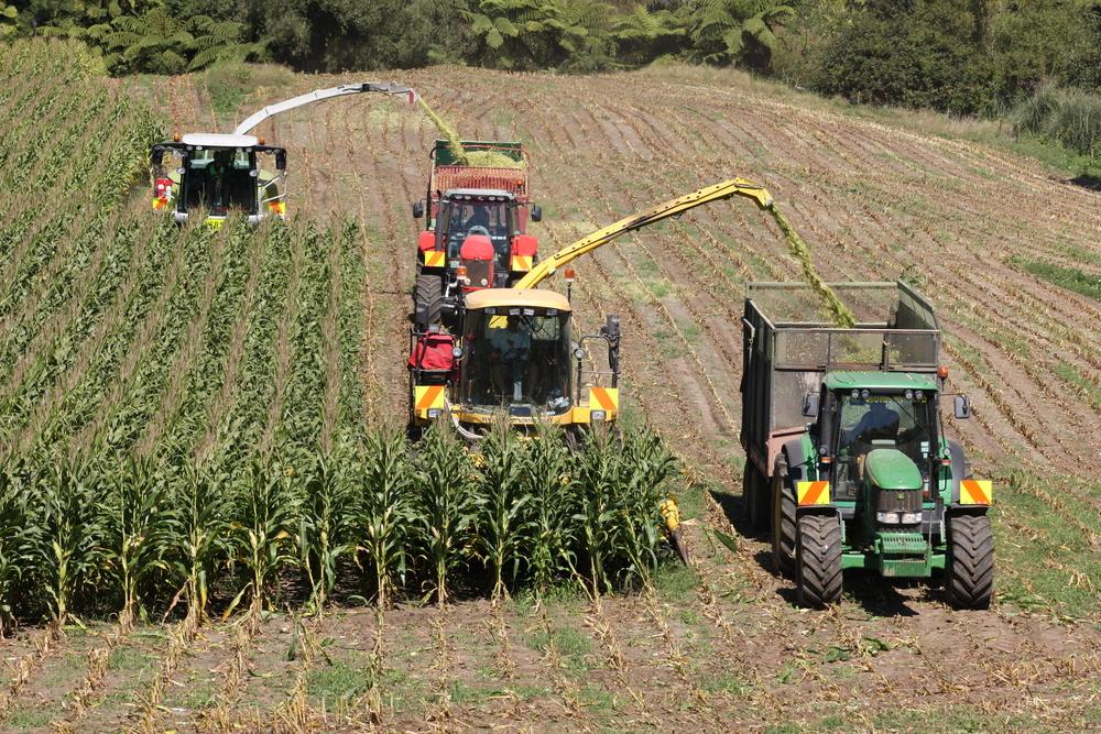Harvesting - Faull Farm