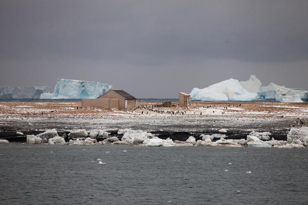 25_Antarctica_140305.jpg