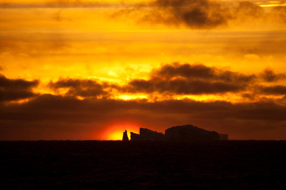 37_Antarctica_130216.jpg