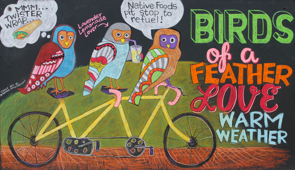 """Birds on a Bicycle"" chalk illustration"