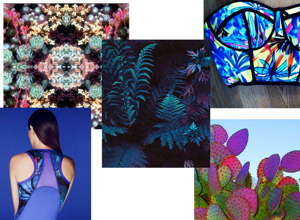 MQZ_Psycho Tropics_Purple plant.jpg