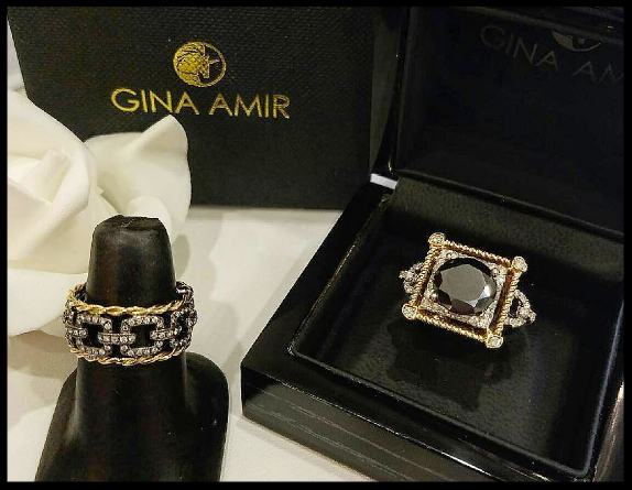Gina Amir Atelier 3.png