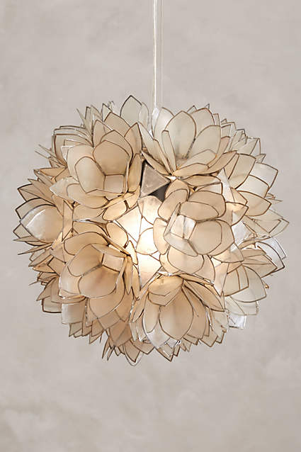 Coppice Shell Pendant Lamp.jpg
