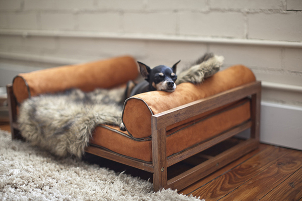 Classic-Dog-Bed-The-Aldo-Pet-Lounger-by-Architect-Pets-with-Zoey.jpg