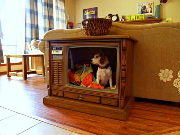 DIY-Pets-Bed-with-OLD-Television.jpg