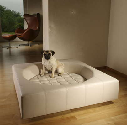 dog_couch-designer-dog-bed.jpg