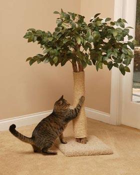 Casa-para-gatos-6.jpeg