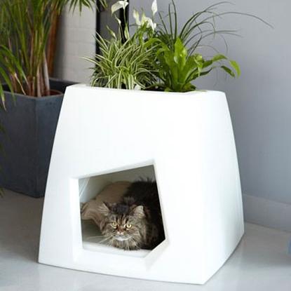 9.-Casa-para-gato-y-plantas.jpg