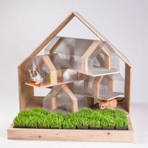 Refugios-para-Gatos-Diseño-y-Arquitectura-para-Felinos3-300x300.jpg
