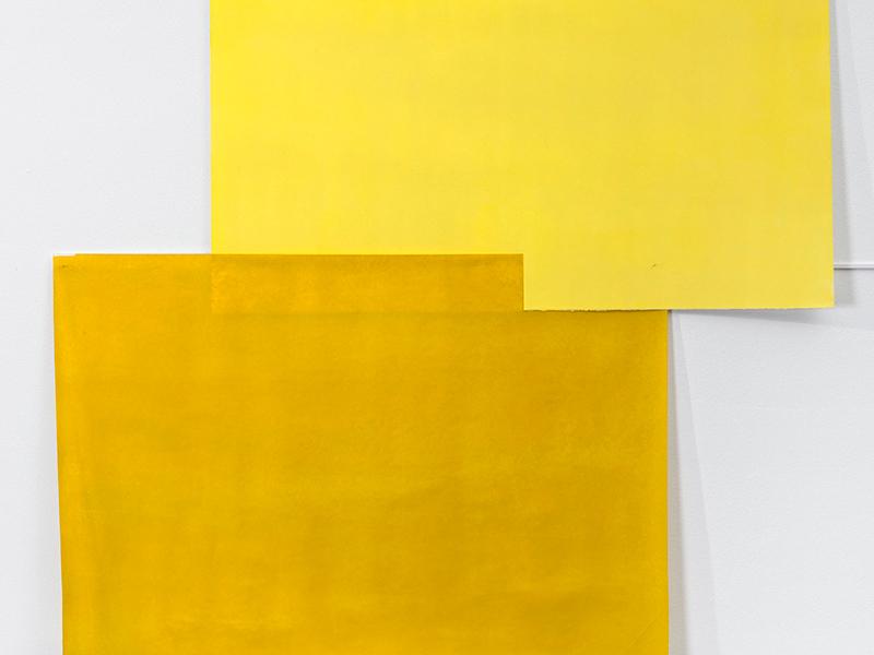 Bernardo Ortiz Sin título, 2015  Óleo sobre papel 132 x 127 cm