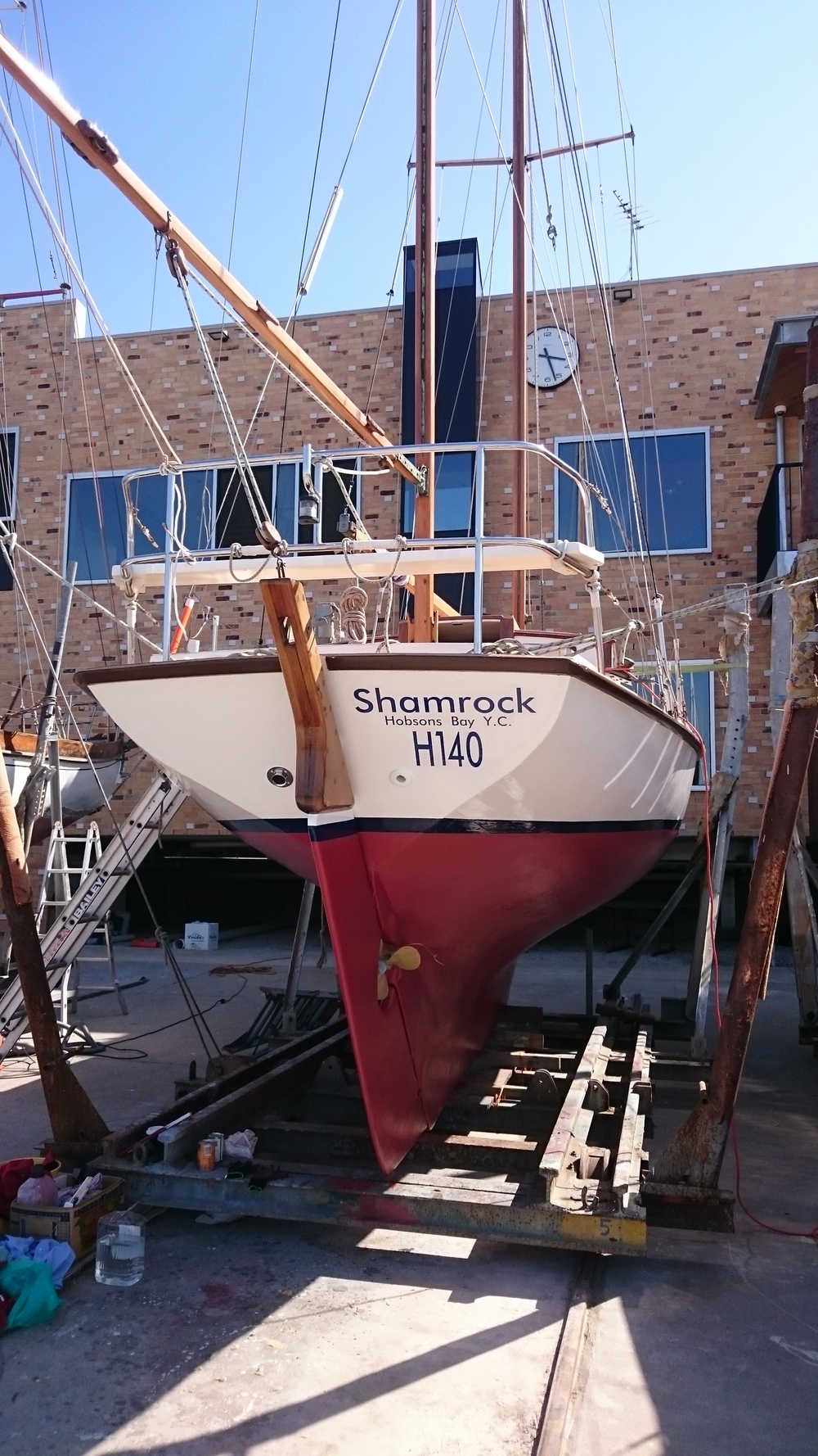 Shamrock 1.JPG