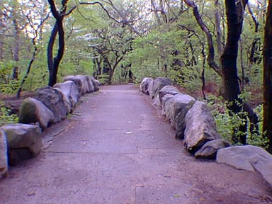 Prospect Park in Brooklyn USA (USGS)