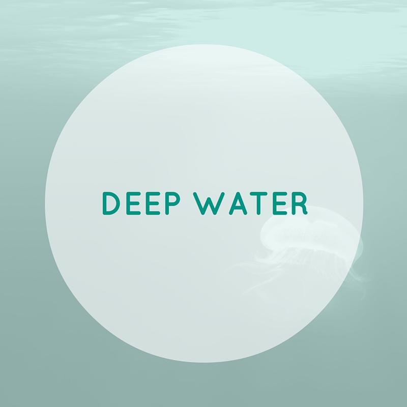 Our Deep Water class is structured for you to use the water's natural resistance to increase cardiovascular endurance as well as strengthen & tone major muscle groups. Float belts provided.     DEEP WATER: B | I | A