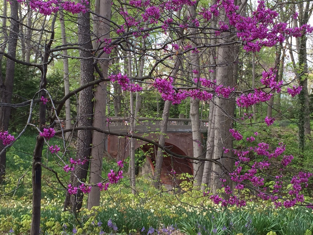 Oldfields Gardens, Indianapolis