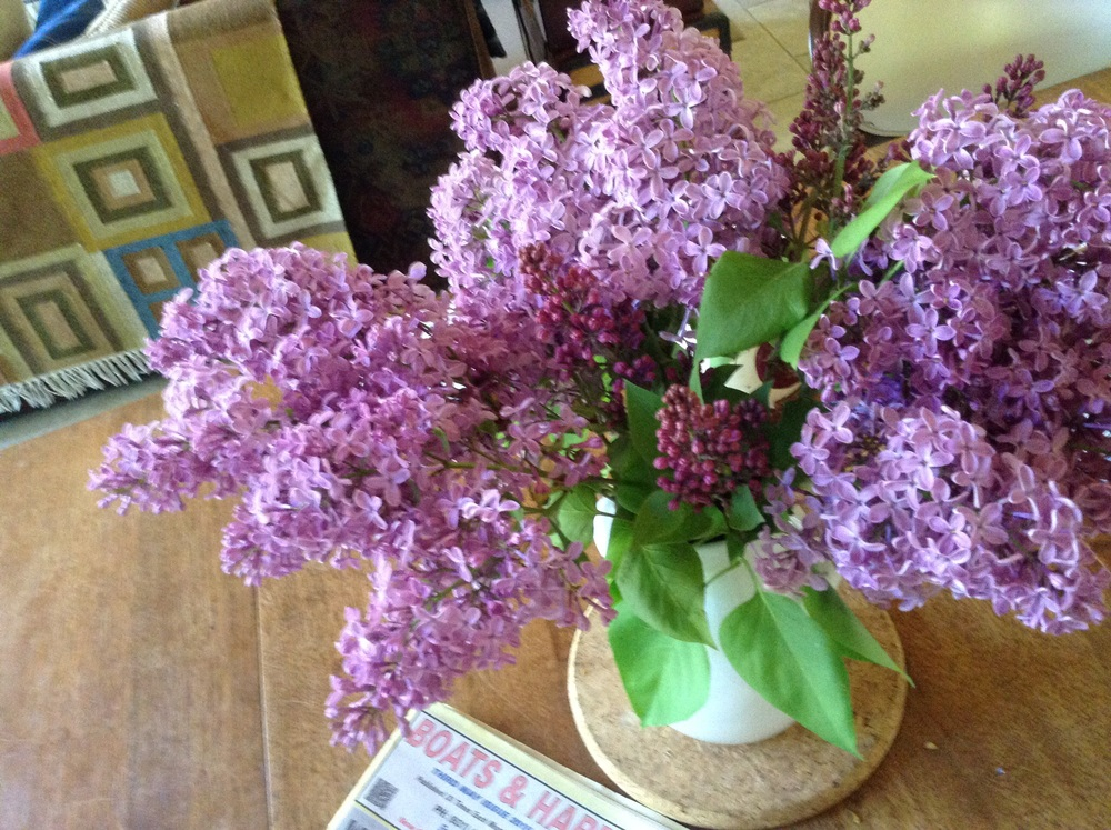 ... lilac time