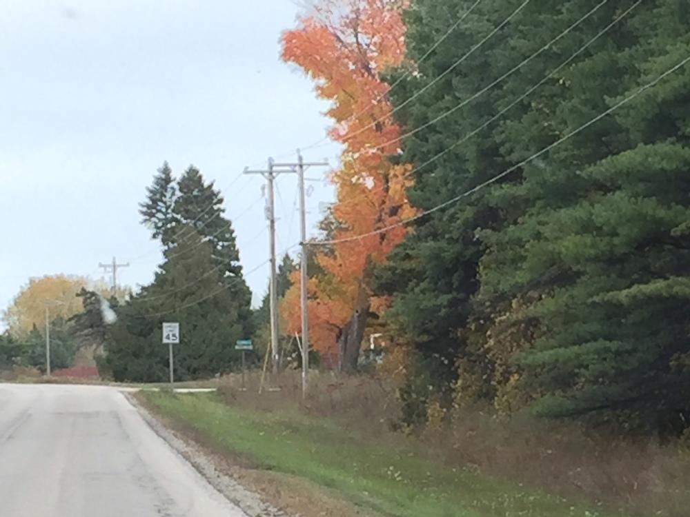 Garrett Bay Road