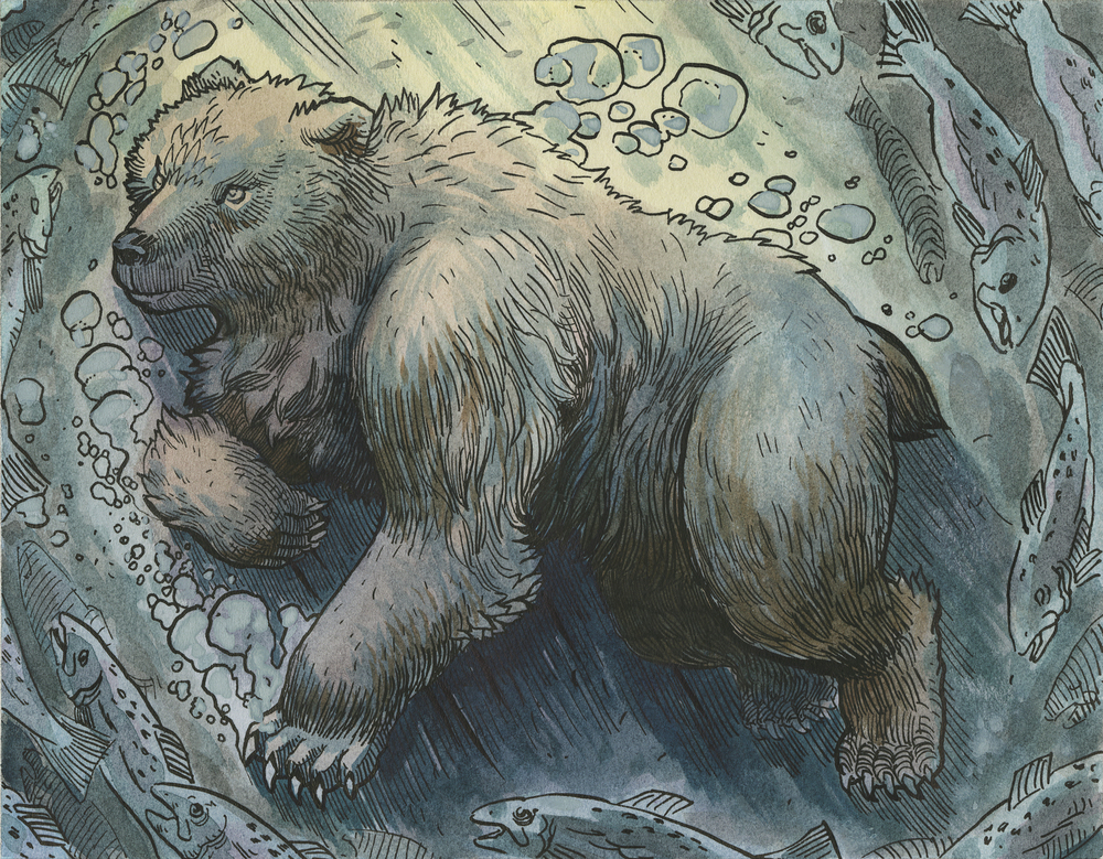 Bear Underwater