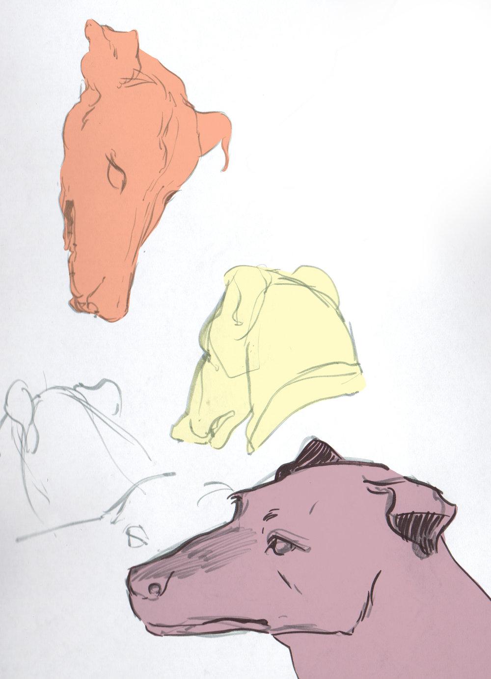 hounds-9.jpg