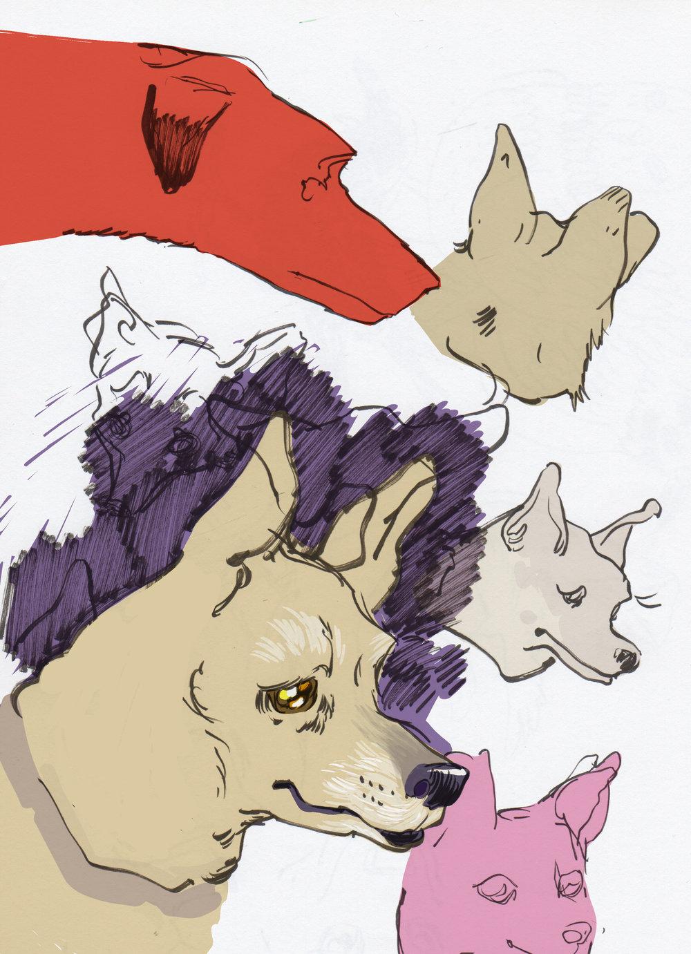 hounds-5.jpg