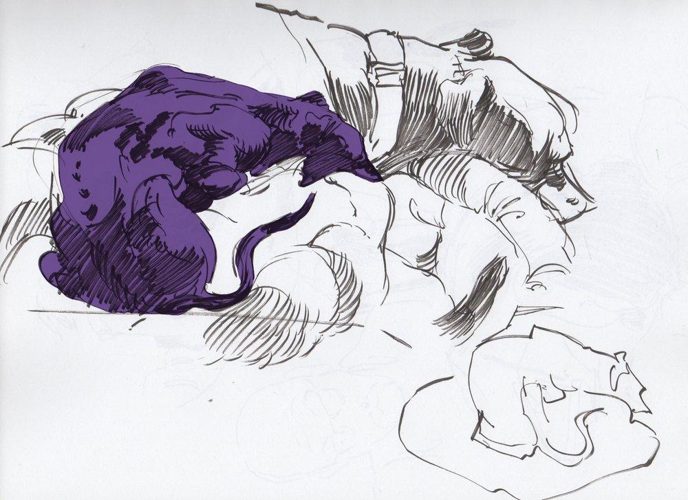 hounds-7.jpg