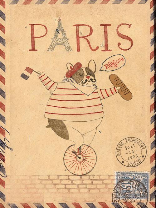 French+French+Bulldog.jpg
