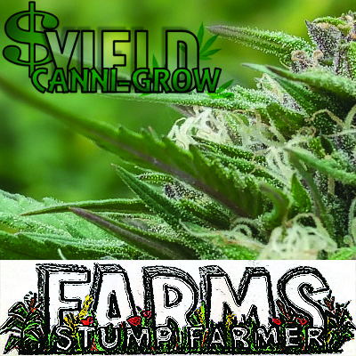 StumpFarmer Farms.jpg