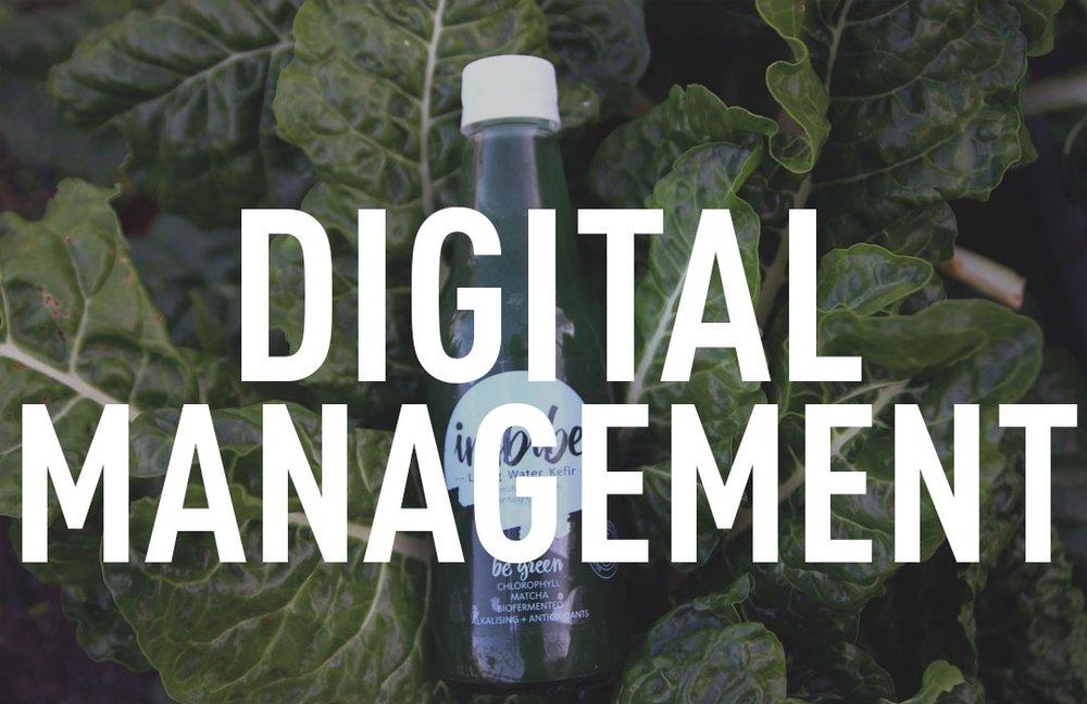 DigitalManagement.jpg