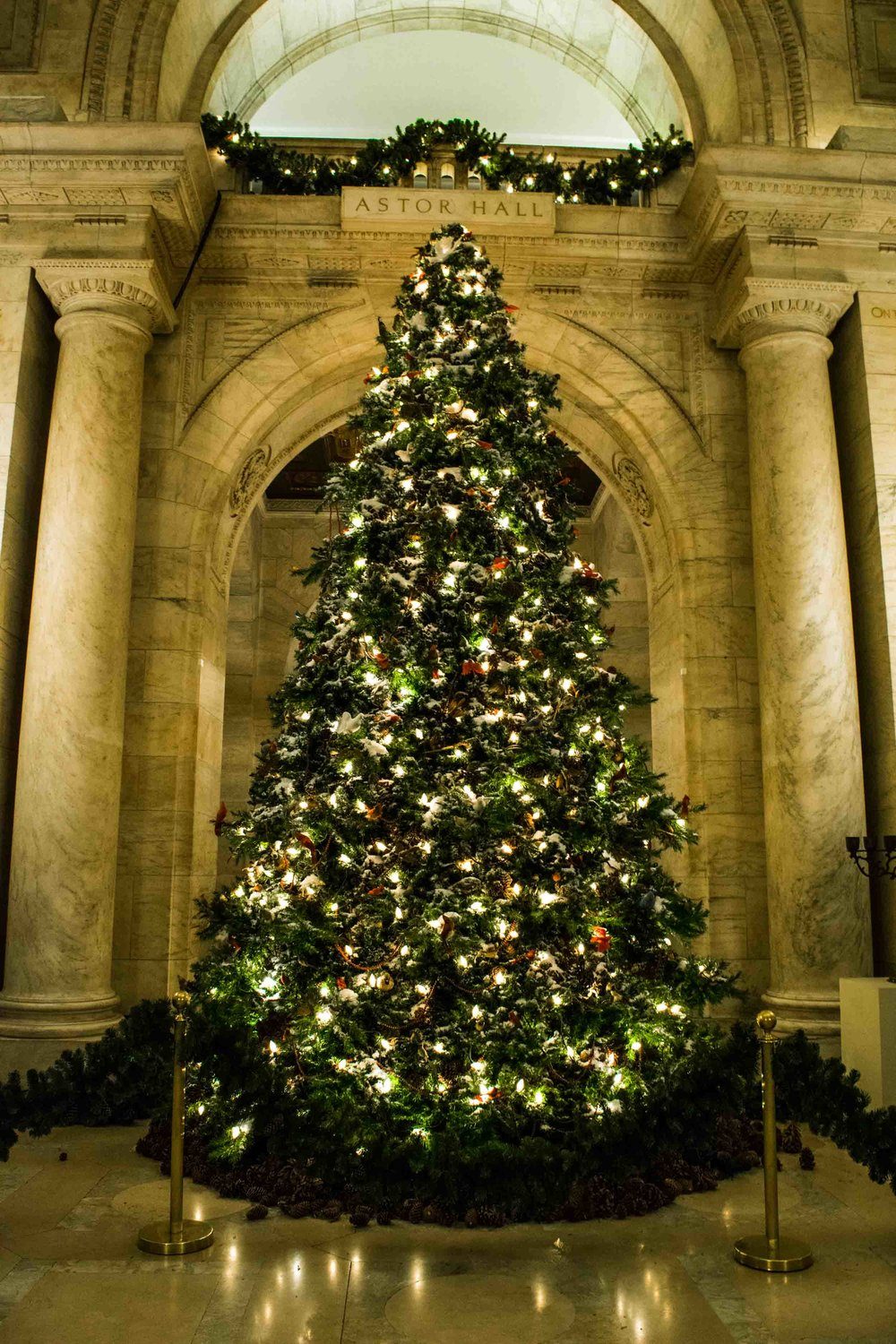 Christmas tree at the New York Public Library.