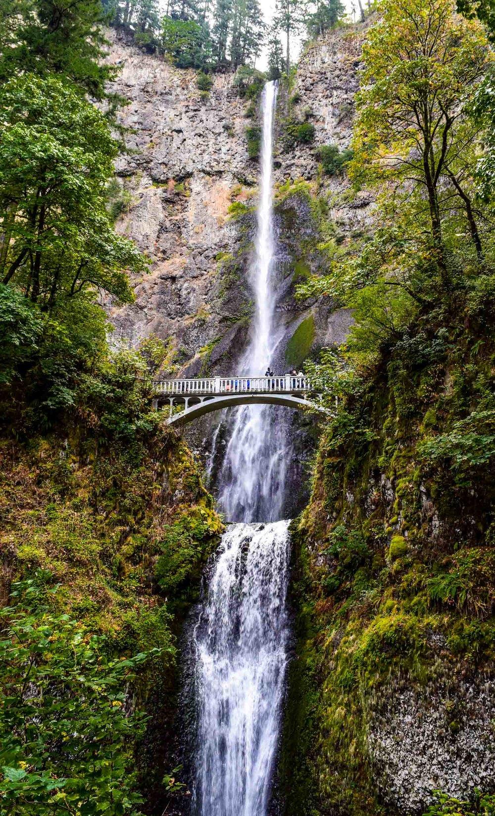 Multnomah Falls is a waterfall in the Columbia River Gorge, near Portland in Oregon, USA.