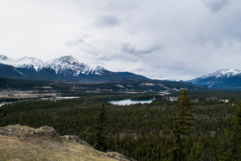Views over Jasper from the Old Fort Point trail. Alberta, Canada.